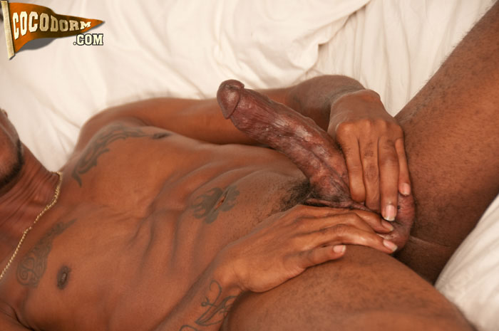 CocoDorm Mr Phat Lipps Black Thug With Huge Lips and Cock Jerking off Big Black Cock 24 Mr. Phat Lipps:  Amateur Ghetto Black Thug Jerks A Big Black Cock