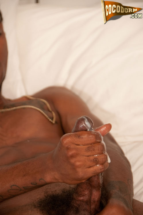 CocoDorm Mr Phat Lipps Black Thug With Huge Lips and Cock Jerking off Big Black Cock 37 Mr. Phat Lipps:  Amateur Ghetto Black Thug Jerks A Big Black Cock
