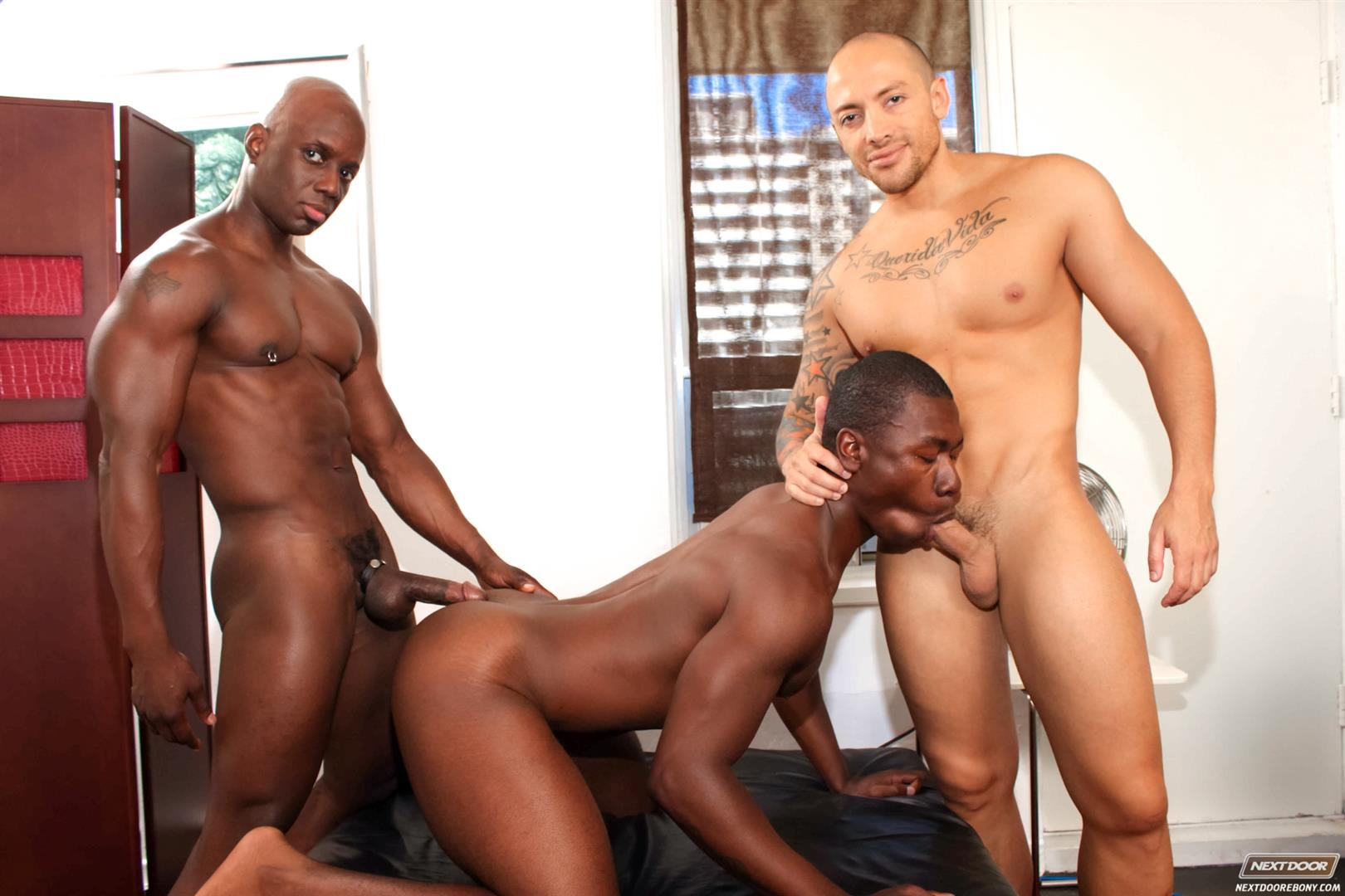 Interracial gay three way