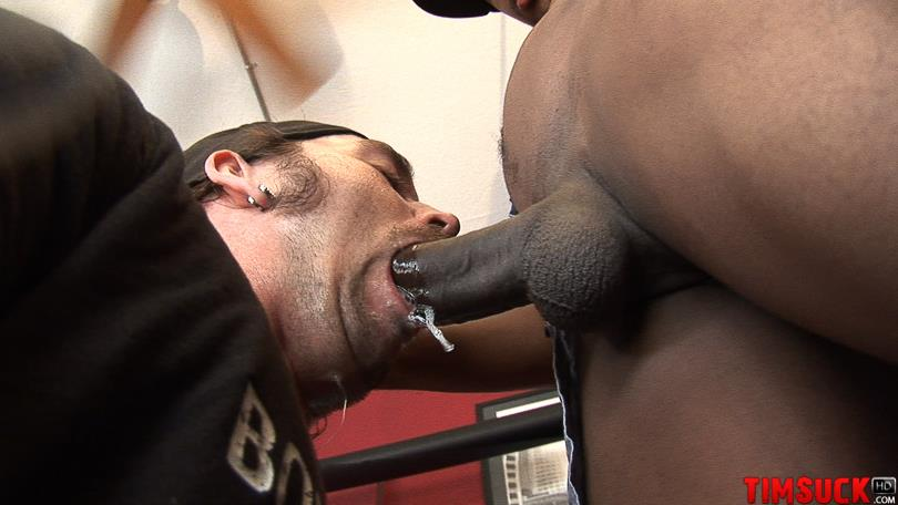 Black Gays Sucking Cock