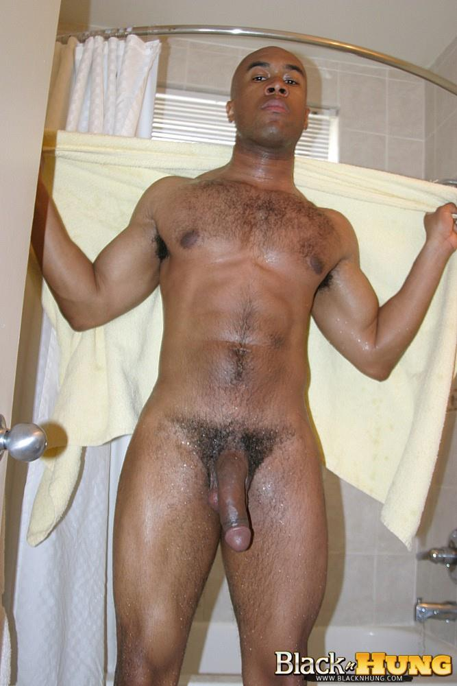 Hung black gay dick