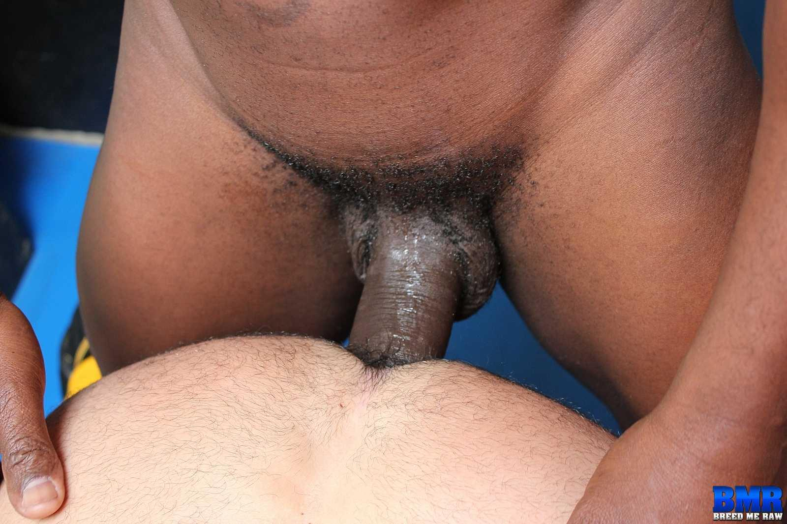 Big raw black dick