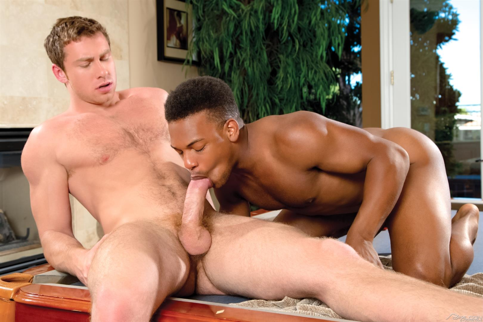 Black on white gay porn