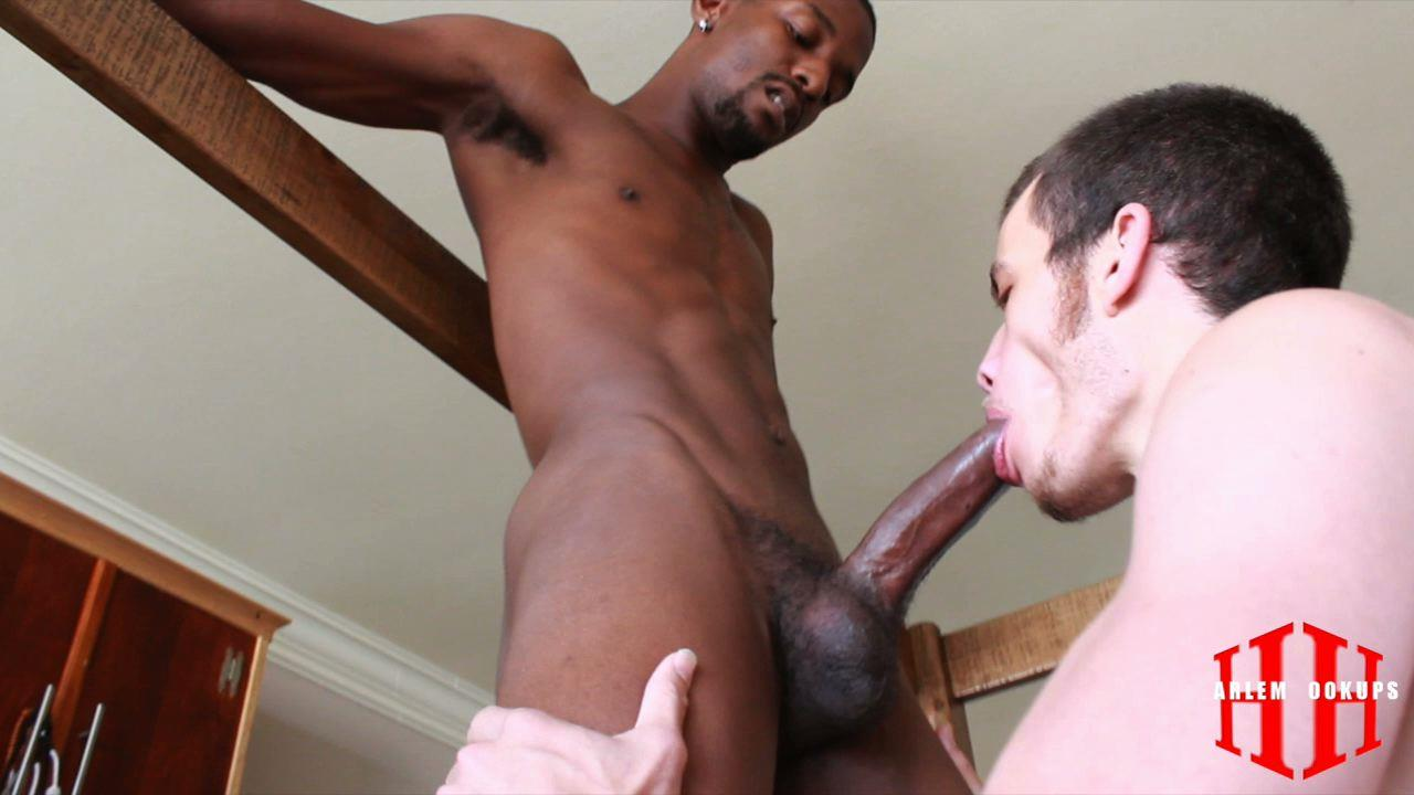 Gay Black Thug Sucks Cock
