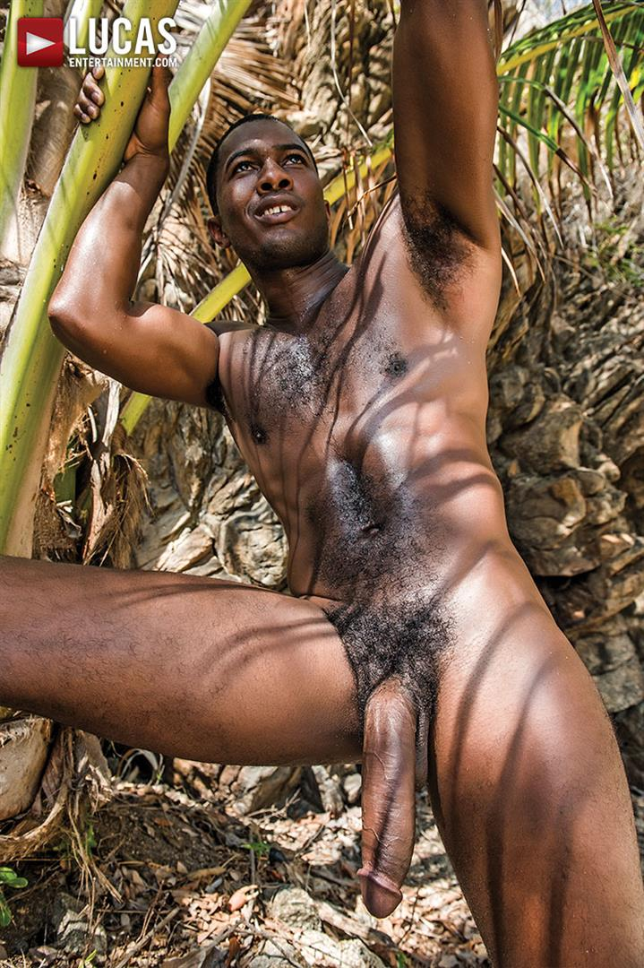 gay black men dick